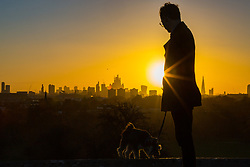 A dog walker enjoys the early morning sunlight as day breaks over London's skyline, seen from Primrose Hill, to the north of the city. London, November 13 2018.
