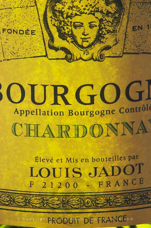Closeup close-up of a wine bottle label Maison Louis Jadot Bourgogne Chardonnay Appellation Controlee backlit backlight back lit light white, Maison Louis Jadot, Beaune Côte Cote d Or Bourgogne Burgundy Burgundian France French Europe European