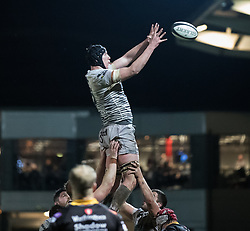 Ospreys' Adam Beard claims the lineout<br /> <br /> Photographer Simon King/Replay Images<br /> <br /> Guinness Pro14 Round 12 - Dragons v Cardiff Blues - Sunday 31st December 2017 - Rodney Parade - Newport<br /> <br /> World Copyright © 2017 Replay Images. All rights reserved. info@replayimages.co.uk - http://replayimages.co.uk