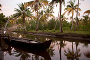 Boat moored in the water palm trees on the Kerelan backwaters, near Alleppey, Kerela, India. .