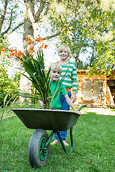 Two brothers playing with wheelbarrow in the garden