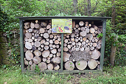 Bug hotel on Caldey Island, Tenby, Pembrokeshire, South Wales 2021