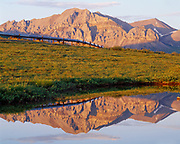 Trans Alaska Pipeline reflected in pond along the Dalton Highway north of the Atigun River Crossing, Philip Smith Mountains of the Brooks Range, Alaska.