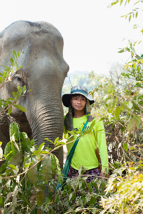 Portrait of elephant and mahout near Luang Prabang in Laos
