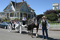 Horse and carriage in Mendocino Village