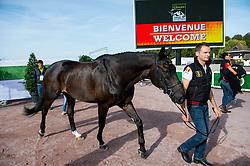 Eveline Van Looveren, (BEL), Exelent - Horse Inspection Para Dressage - Alltech FEI World Equestrian Games™ 2014 - Normandy, France.<br /> © Hippo Foto Team - Jon Stroud<br /> 25/06/14