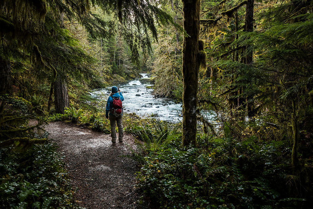 A woman taking pictures of the Skokomish river in the Staircase Rapids area of Olympic National Park, Washington, USA.