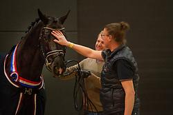 Totilas <br /> KWPN Stallion Show 2019<br /> © Hippo Foto - Sharon Vandeput<br /> 1/02/19