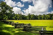 Mississippi fences