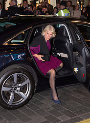 Embargoed to 0001 Tuesday November 13 The Duchess of Cornwall arrives at the We Are Most Amused and Amazed performance at the London Palladium.