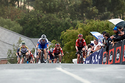 Brodie Chapman (AUS) and Liane Lippert (GER) lead up the final climb at the 2020 Cadel Evans Great Ocean Road Race - Deakin University Women's Race, a 121 km road race in Geelong, Australia on February 1, 2020. Photo by Sean Robinson/velofocus.com