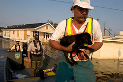 05 Sept  2005. New Orleans, Louisiana. Post hurricane Katrina.<br /> Animal rescue boat. Local man Jimmy Delery assists the The Kentucky Dept of Fish and Wildlife resources team as he rescues animals from the devastating floods in Uptown New Orleans.<br /> Photo; ©Charlie Varley/varleypix.com