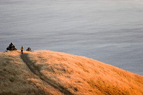 Young man biking near Bolinas Ridge; Mt. Tamalpais State Park. Golden Gate National Recreation Area. San Francisco,  CA<br />