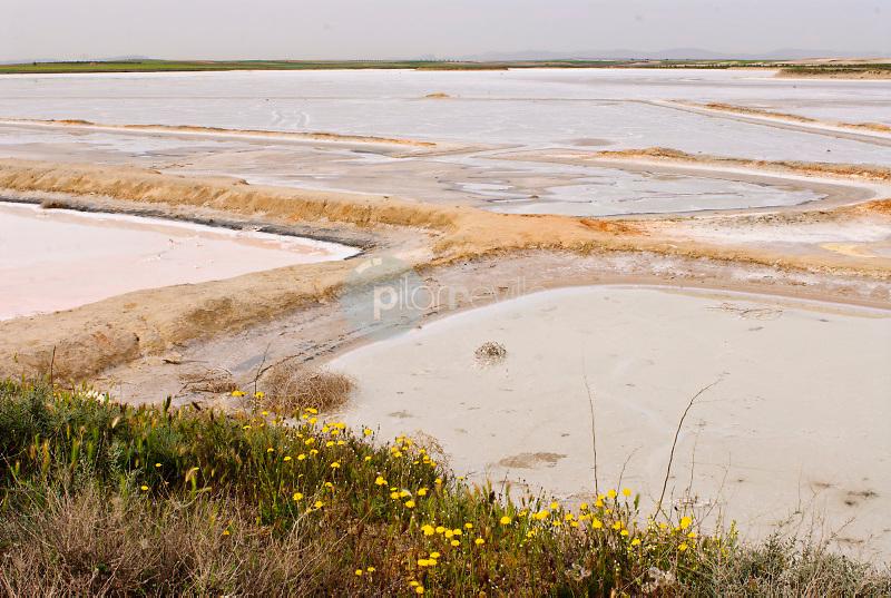 Reserva Natural Laguna de Pañahueca. Villacañas. Toledo. Ruta de Don Quijote. ©Antonio Real Hurtado / PILAR REVILLA