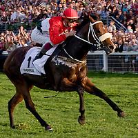 Hungarian Horse Racing Grand Prix 2009