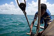 Boys tying rope aboard sailboat, dhow, off Lamu Island, Kenya, Africa