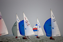© Sander van der Borch. Enkhuizen,  12 September 2008. Nederlands kampioenschap Draak.