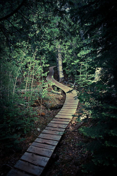 The Stairway to Heaven mountain bike trail in Copper Harbor Michigan.