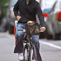 Tom Brady and son John Moynahan, and Vida, Gisele's dog, bicycle in and around Boston. Photo by Mark Garfinkel