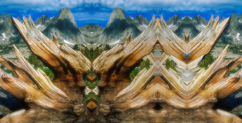 """""""Wind River Range Sculpture"""", derivative image created from a photo of weathered log, Cirque of the Towers, Wind River Range, Wyoming, USA"""