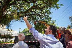 O prefeito Nelson Marchezan Júnior acompanhou, nesta terça-feira, 10 de março, os trabalhos de podas e supressões de árvores em vias públicas e áreas municipais. FOTO: Jefferson Bernardes