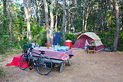 A campsite in the woods.