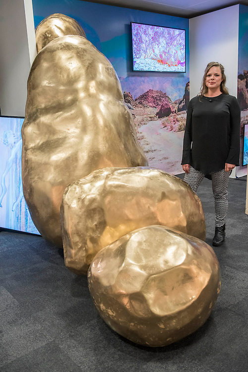 Lay of the Land (and other such myths) by Victoria Lucas (pictured and winner of the SOLO Award2016) in the Chiara Williams Contemporary Art Gallery - The 29th edition of London Art Fair takes place in the Business and Design Centre, Islington, from18-22January 2017.