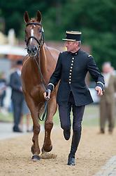 Dhennin Didier (FRA) - Opi de Saint Leo<br /> Horse Inspection <br /> CCI4*  Luhmuhlen 2014 <br /> © Hippo Foto - Jon Stroud