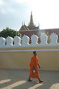 A monke walks by the Kings Palace, in Phnom Penh, Cambodia. PHOTO TIAGO MIRANDA