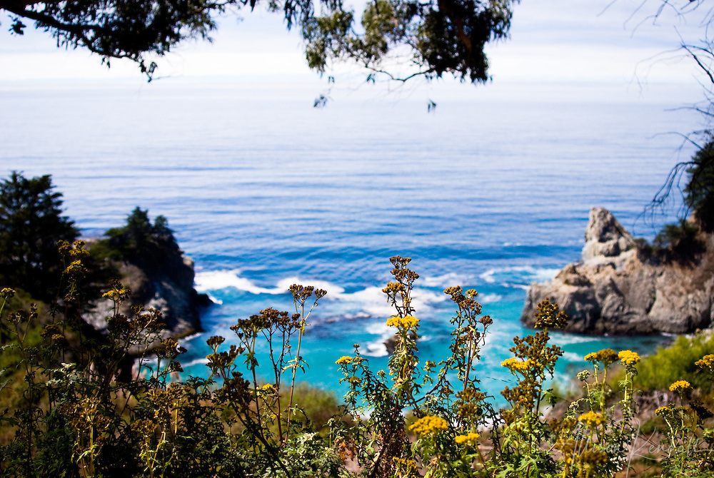 Vivid colors paint the Big Sur landscape on a late summer afternoon, at Julia Pfeiffer Burns State Park