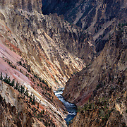 Yellowstone River in the Grand Canyon of the Yellowstone, Yellowstone National Park, Wyoming