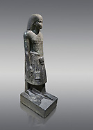 """Ancient Egyptian statue of Aanen, second priest to Amon, granodioite, New Kingdom, 18th Dynasty, (1390-1353, Thebes. Egyptian Museum, Turin. <br /> <br /> A dignitary wearing a wig, a long gown and the leopard skin of a priest. Writing on his belt are the names of Amenhotep III, Aanen and an inscription tells us that the statue depicts the astronomer priest Aanen  by saying """" one knows the procession of the sky"""". Aanen was the brother of the queen Teye wife of Amenhotep III. Drovetti collection, cat 1377 .<br /> <br /> If you prefer to buy from our ALAMY PHOTO LIBRARY  Collection visit : https://www.alamy.com/portfolio/paul-williams-funkystock/ancient-egyptian-art-artefacts.html  . Type -   Turin   - into the LOWER SEARCH WITHIN GALLERY box. Refine search by adding background colour, subject etc<br /> <br /> Visit our ANCIENT WORLD PHOTO COLLECTIONS for more photos to download or buy as wall art prints https://funkystock.photoshelter.com/gallery-collection/Ancient-World-Art-Antiquities-Historic-Sites-Pictures-Images-of/C00006u26yqSkDOM"""