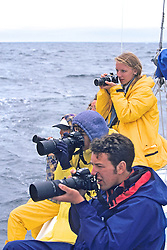 Photographing Orcas