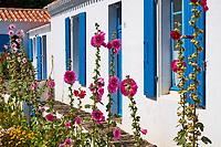 France, Vendée (85), Ile d'Yeu, La Croix // France, Vendée, Yeu island, La Croix village