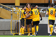 Goal 1-1 Fabio Silva (17) of Wolverhampton Wanderers scores and celebrates the equaliser during the Premier League match between Wolverhampton Wanderers and West Bromwich Albion at Molineux, Wolverhampton, England on 16 January 2021.