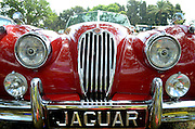 Jaguar Classic Car Logo