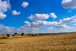 """Le pale eoliche sfruttano il principio dei mulini a vento; il loro sviluppo è dovuto alla costante crisi energetica e alla necessità di produrre energia """"pulita"""" a basso impatto ambientale. Gli impianti vengono installati su siti alti e ventilati."""