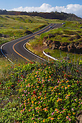 The road along the North end of Maui, Hawaii.