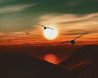 Seagulls at sunset on the beach. What could be more atmospheric and bring the sea into your home than this coastal scene. This painting easily brings the atmosphere of the sea to your home. This coastal scene can be printed in different sizes and on different materials. Both on canvas, wood, metal or framed so it certainly fits into your interior. –<br /> -<br /> BUY THIS PRINT AT<br /> <br /> FINE ART AMERICA / PIXELS<br /> ENGLISH<br /> https://janke.pixels.com/featured/seagulls-at-sunset-6-jan-keteleer.html<br /> <br /> <br /> WADM / OH MY PRINTS<br /> DUTCH / FRENCH / GERMAN<br /> https://www.werkaandemuur.nl/nl/shopwerk/Zeemeeuwen-bij-zonsondergang-6/778290/132?mediumId=15&size=70x55<br /> –<br /> -