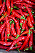 Close-up of 'Red Rocket' Cayenne peppers at the Common Ground Fair farmers market, Unity Maine.