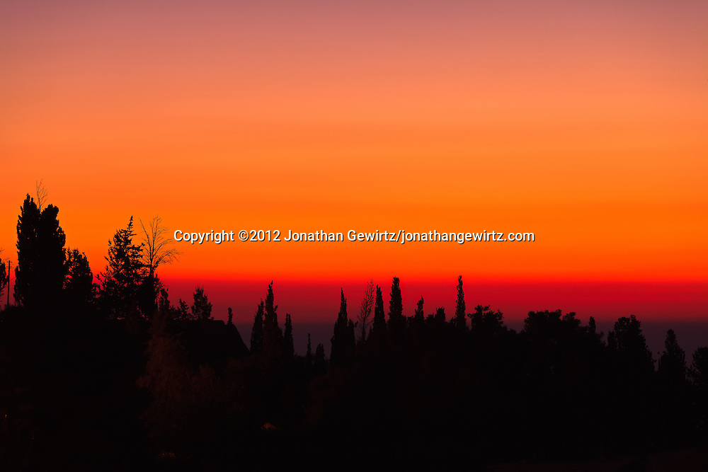 Trees on Jerusalem's Mount Zion are silhouetted against a hazy red sky shortly before sunrise. WATERMARKS WILL NOT APPEAR ON PRINTS OR LICENSED IMAGES.