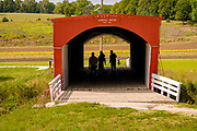 """14 SEPTEMBER 2020 - WINTERSET, IOWA: Tourists walk through the Hogback Bridge. The bridge is closed to vehicles. The Hogback Bridge in Madison County was built in 1884. The covered bridges of Madison County are an enduring tourist attraction more than 25 years after the book and movie """"The Bridges of Madison County"""" made them famous. There are six covered bridges in Madison County, all built in the 1800s. They are remnants of about 100 covered bridges built in Iowa from the 1850s through the late 1800s. Most of the briges were washed away in floods, condemned, or destroyed in fires. The Madison County bridges have been restored and rebuilt through the years.   PHOTO BY JACK KURTZ"""