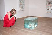 SARAH BRAKA, Damien Hirst, Tate Modern: dinner. 2 April 2012.