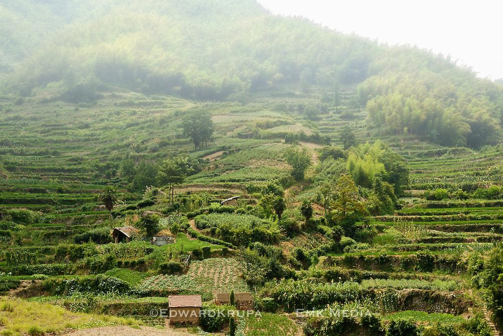 Terraced farming on hillside in China.