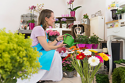 Mid adult woman watering flowers in shop