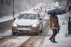 © Licensed to London News Pictures. 24/01/2021. London, UK. A woman shelters underneath an umbrella during heavy Snowfall on Hampstead Heath in Hampstead in north London. Parts of the UK continue to suffer from flooding caused by Storm Christoph. Photo credit: Ben Cawthra/LNP
