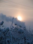 Sonnenaufgang in einer sibirische Winterlandschaft in der Nähe der Stadt Jakutsk. Jakutsk wurde 1632 gegruendet und feierte 2007 sein 375 jaehriges Bestehen. Jakutsk ist im Winter eine der kaeltesten Grossstaedte weltweit mit durchschnittlichen Winter Temperaturen von -40.9 Grad Celsius. Die Stadt ist nicht weit entfernt von Oimjakon, dem Kaeltepol der bewohnten Gebiete der Erde.<br /> <br /> Sunrise in a Siberian winter landscape close to the city of Yakutsk. Yakutsk was founded in 1632 and celebrated 2007 the 375th anniversary - billboard announcing the celebration. Yakutsk is a city in the Russian Far East, located about 4 degrees (450 km) below the Arctic Circle. It is the capital of the Sakha (Yakutia) Republic (formerly the Yakut Autonomous Soviet Socialist Republic), Russia and a major port on the Lena River. Yakutsk is one of the coldest cities on earth, with winter temperatures averaging -40.9 degrees Celsius.