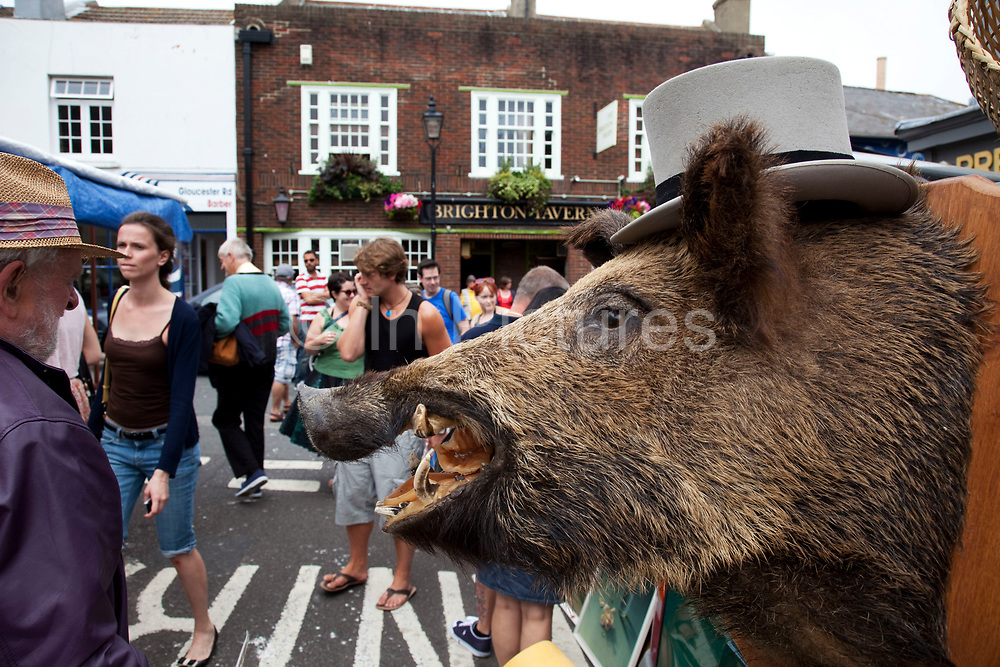 Stuffed wild boar with a top hat for sale at a stall on a market street in the North Laines area of Brighton, East Sussex. North Laine—sometimes incorrectly called the North Lanes—is a shopping and residential district of Brighton, on the English  south coast immediately adjacent to the Royal Pavilion. Once a slum area, nowadays with its many pubs and cafés, theatres and museums, it is seen as Brighton's bohemian and cultural quarter.