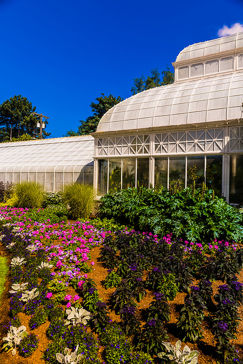 The Volunteer Park Conservatory is a Victorian-style greenhouse modeled on London's Crystal Palace. It was completed in 1912.