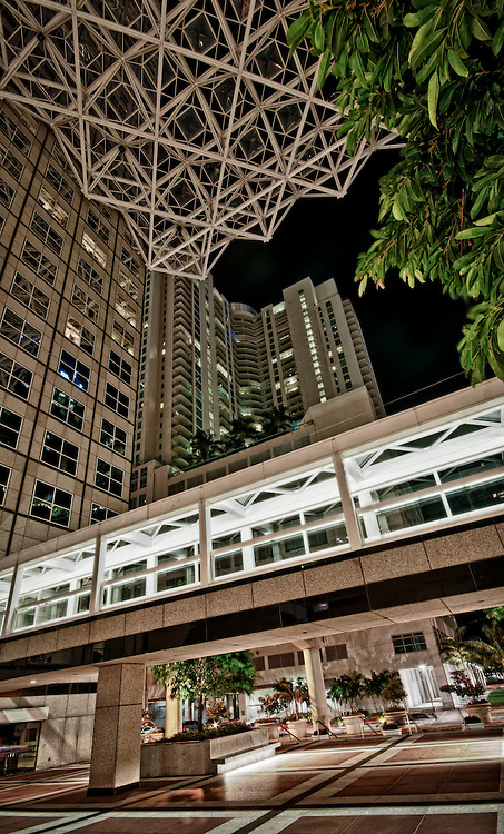 Modern office building in downton Miami.